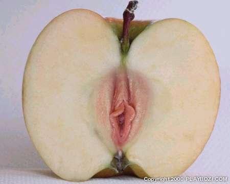 ¿Por qué Adan mordió la manzana?