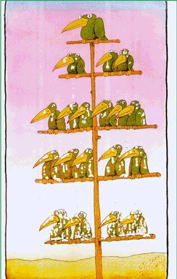 Jerarquía en la Empresa