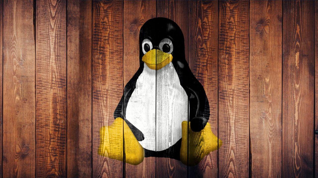 El sistema operativo Linux comienza a llegar a los consumidores