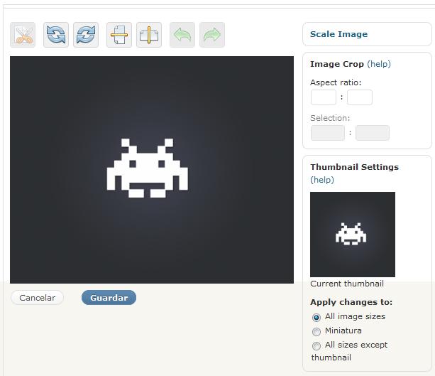 oEmbed, Wordpress 2.9 y el editor de imágenes